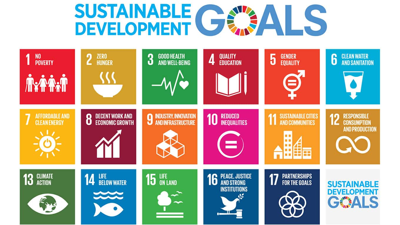 suPPPort Services Sustainable Development Goals_placement underneath the text