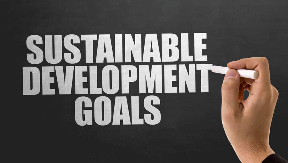 suPPPort Sustainable Development Goals